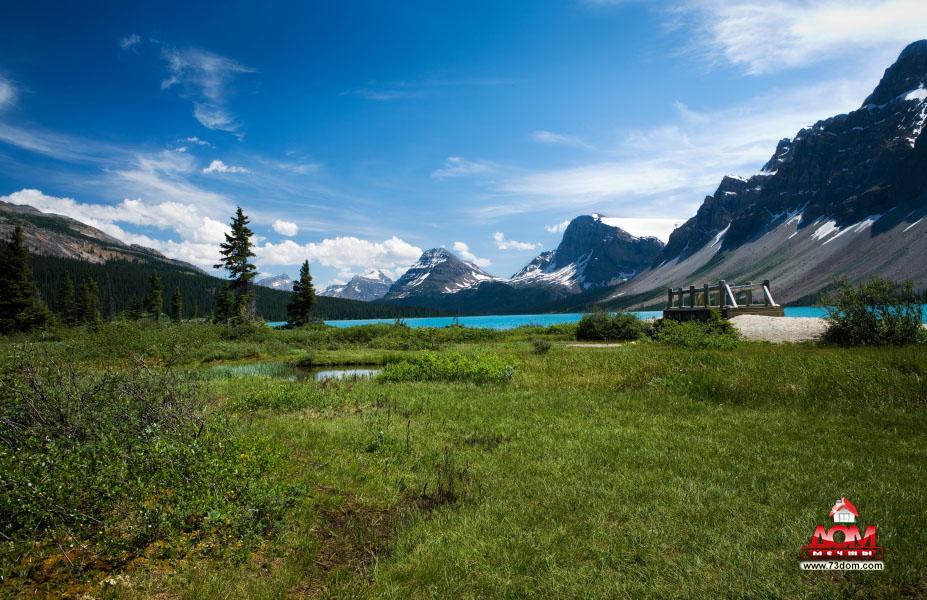 натяжные потолки с фотопечатью каталог изображений - Природа